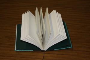 Shanae's Flatbook Book Interior